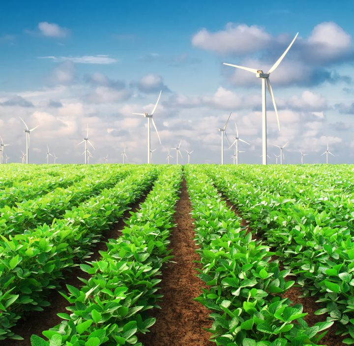 From Farm to Fork — Revolutionizing Food Systems